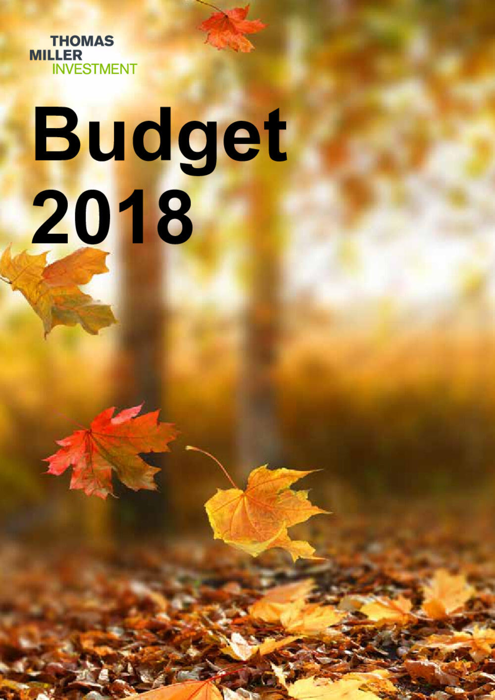 Budget Summary - October 2018