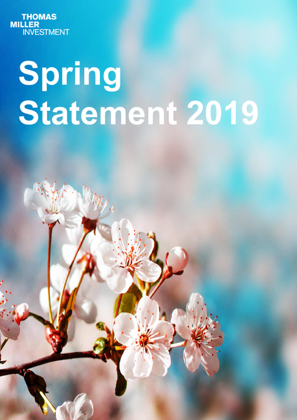 Spring Statement - March 2019
